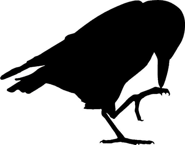 raven silhouette | Halloween | Pinterest | Ravens ...