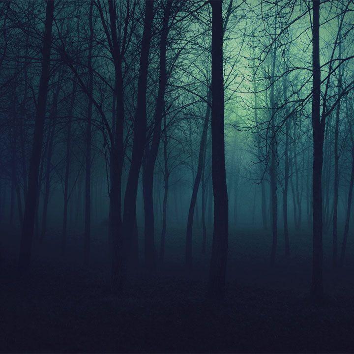 Che ne dite di una scorpacciata di frasi sulle tenebre? Preparatevi a calarvi nel buio, anche solo con l'immaginazione, e gustatevi tutti questi aforismi.