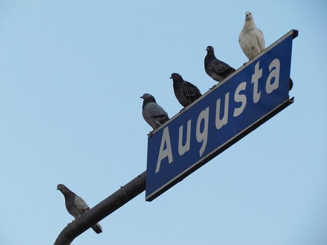 São Paulo @ Rua Augusta by Marcelo Costa