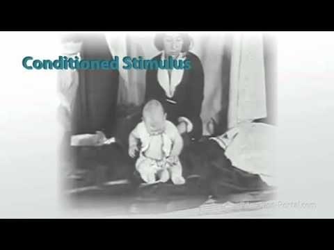 Psychology 101 - Learning (Part 2/8) - Watson and Little Albert
