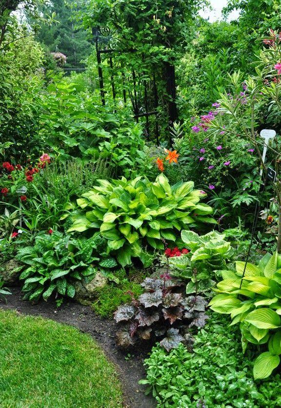 Gartengestaltung Mit Funkien Garten Garten Landschaftsbau Garten Bepflanzen