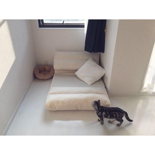 Erinaさんの、猫,ねこ,3Coins,ねこ部,ホワイトインテリア,モノトーン,一人暮らし,アンティーク,ミニマリスト,ベッド周り,のお部屋写真