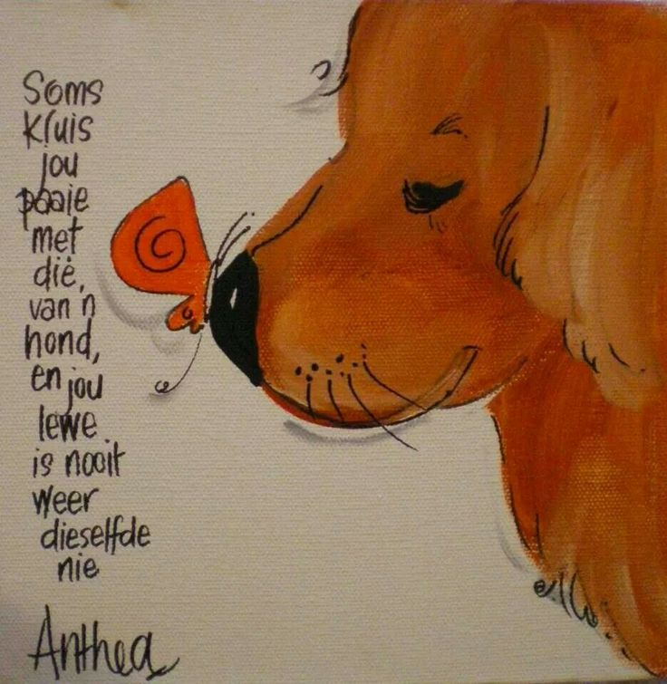 "Antheas art -- Afrikaans | English: ""Sometimes you cross paths with a dog, and your life is never the same."""