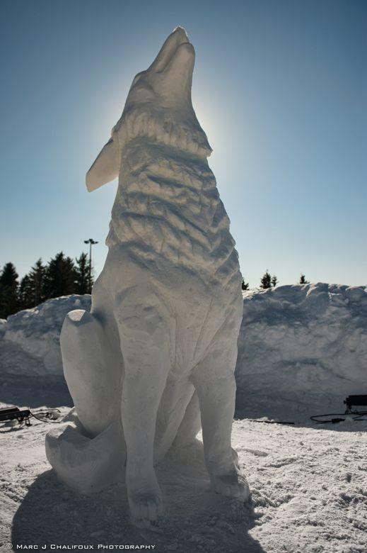 Silver Skate Wolf Snow Sculpture