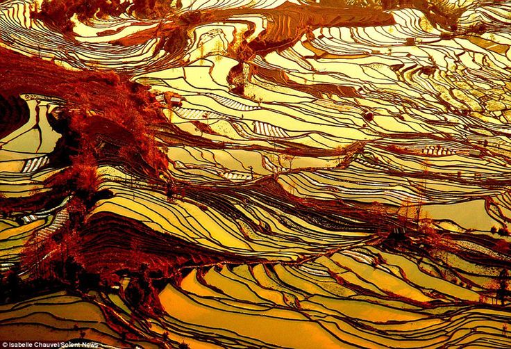 15) Las terrazas de arroz de Yuanyang, en China