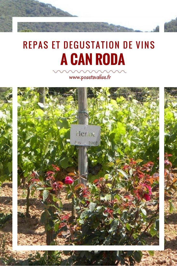 Un des incontournables à faire si vous partez à Barcelone : visiter et faire une dégustation de vins au vignoble Can Roda à Santa Maria de Martorelles ! Retrouvez tous les détails sur mon blog. #Barcelone #Espagne #cava dégustation de vin