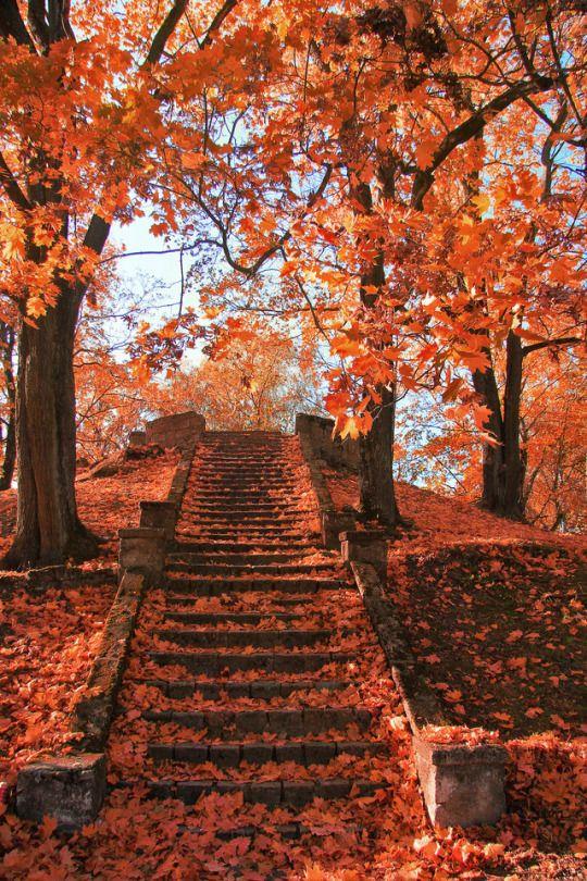 Dark Fall Iphone Wallpaper Quot Autumn In Old Park Quot By Dan Raiz Photo Via