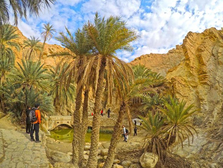 O oásis de Chebika é realmente maravilhoso, provavelmente o mais belo oásis de montanha da Tunísia. Facilmente acessível a partir de Tozeur.