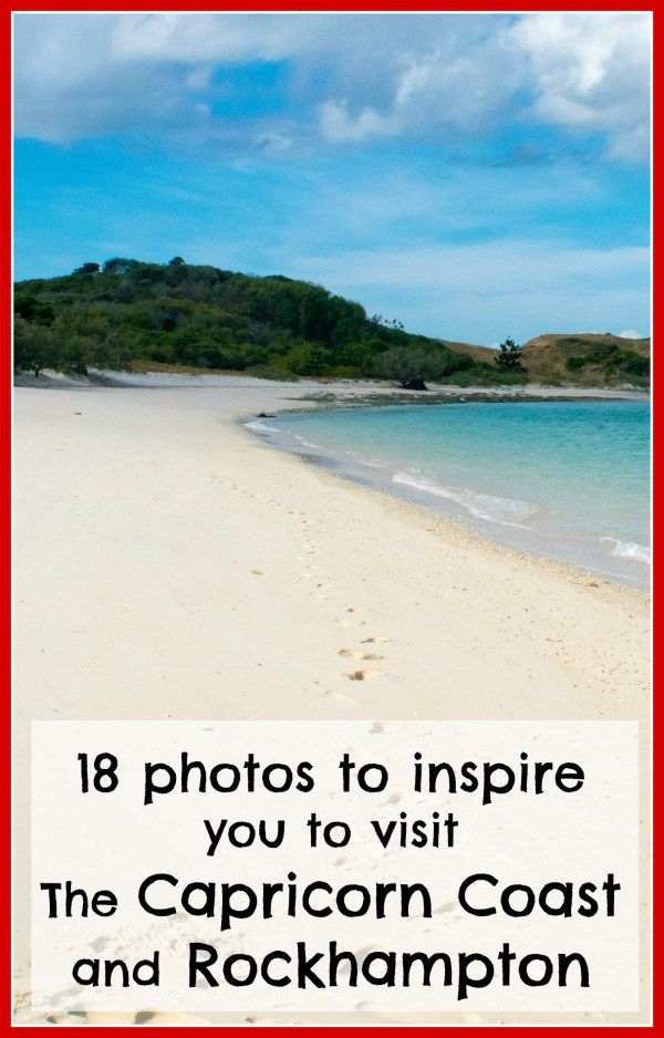 Looking for some family holiday inspiration?  Click the image above for photos of the Capricorn Coast and Rockhampton to inspire family travel.