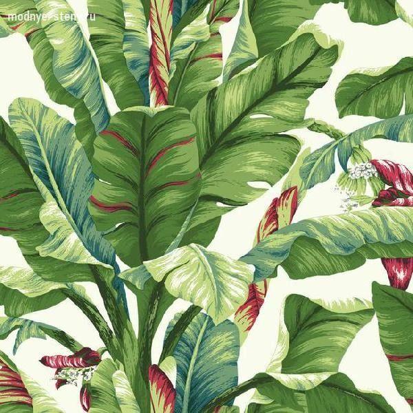 Купить обои «Tropics AT7068» от бренда «Ashford House». Магазин «Модные стены» – более 500 цветов и оттенков обоев.
