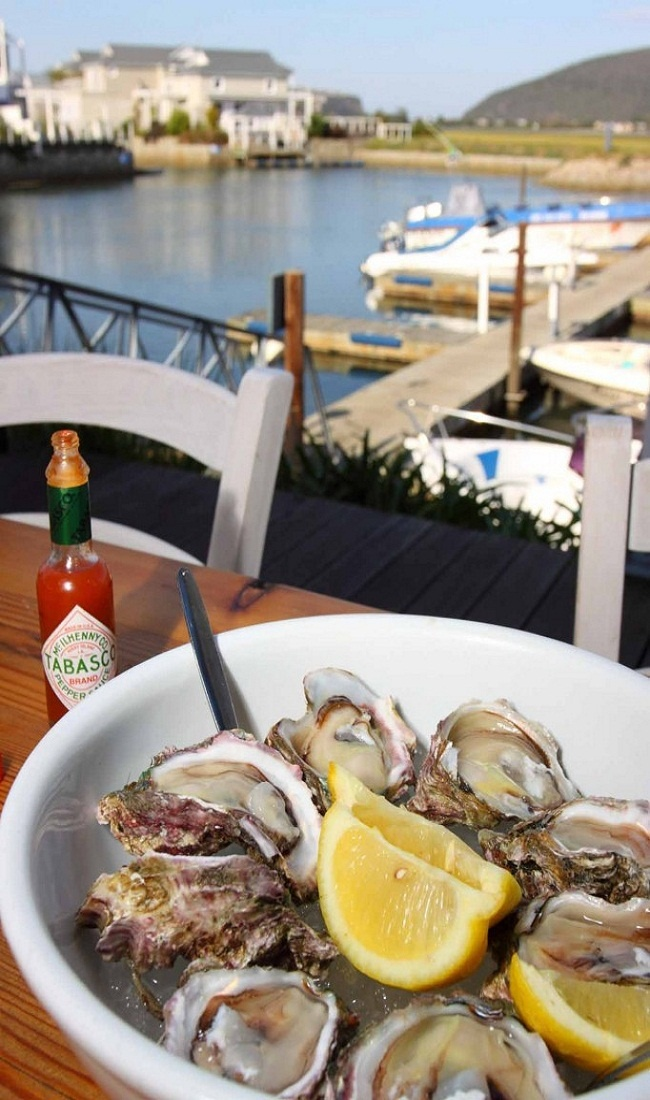 oysters in Cape Town