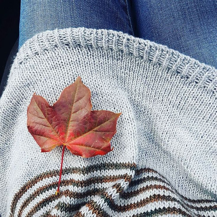 It was the thought of mornings just like the that kept me going through the acres of grey stocking stitch with this #breathingspace sweater.  Cool crisp autumn mornings. Slighty misty. And perfect for flinging on a casual sweater over jeans.  And I even found my first proper autumn leaf in the car park.  It's fate I tell you... #sweaterknitting #sweaterweather #fallknits #autumnknitting #knittersofinstgram #igknitters #knittersofig #sockyarnsweater #stripelove #i_loveknitting #knitlove…