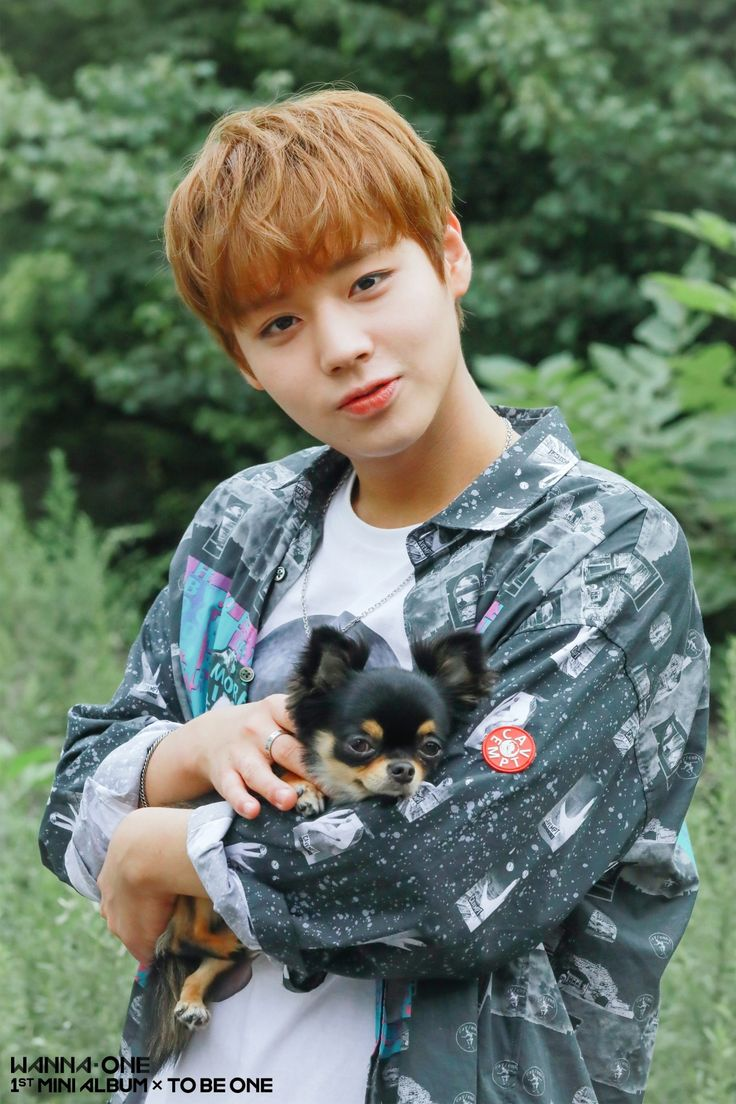 Image result for wanna one jihoon