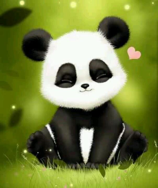 Precious Panda Pandas Pinterest Love Pandas And Sweet