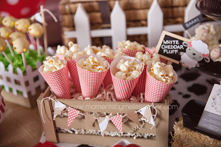 Farm Theme Birthday Party Girl Toddler 2 42 food table, popcorn, paper cones