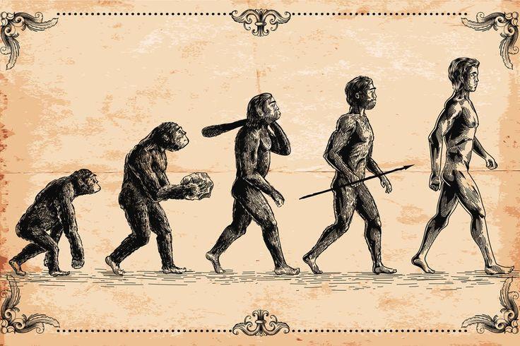 Dieu ou le hasard ? - Un scientifique démonte la théorie de l'évolution