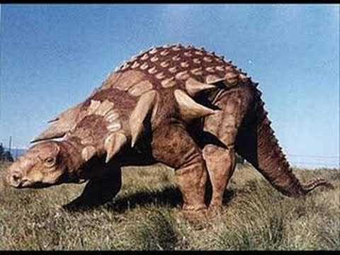 dinosaurs Montage de photos avec fond sonore musical, sans parole 3:59