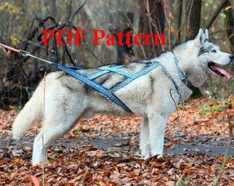 Pdf Pattern X Back Harness Dog Sledding Harness Sledding Collar Dog Harness Dog Accessories Dog Harness Pattern Siber Dog Harness Dog Sledding Sled Dog Harness