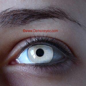 Basic White Halloween Contact Lenses - Demon Eyez - Lens Store