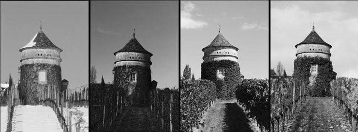 Les Saisons by Chateau Terre Vieille/ Pecharmant / Dordogne / Bergerac / Winery / Vins