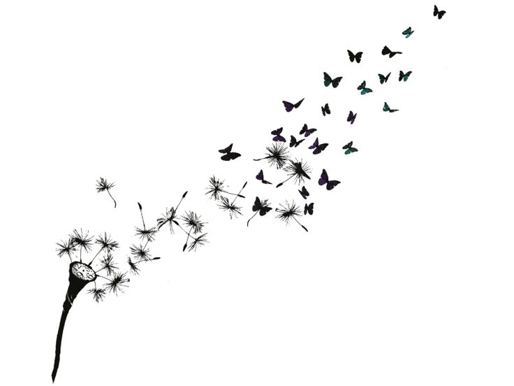 Shop Dandelion Clock | Dottinghill: Temporary Tattoos are now Skin-Accessories!