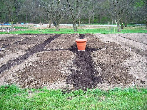 Gardening from scratch interesting things to think about when planning a new garden bed diy for How to start a garden from scratch