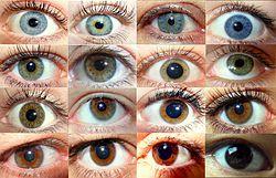 Biometrio: Significado da cor dos olhos e sua relacao com os extraterrestres