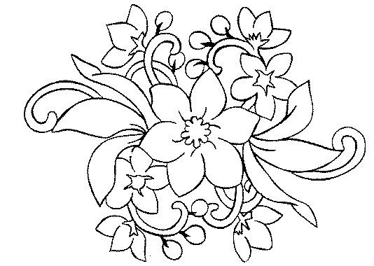 1000 images about flowers on pinterest coloring books artesanato and adult coloring pages. Black Bedroom Furniture Sets. Home Design Ideas