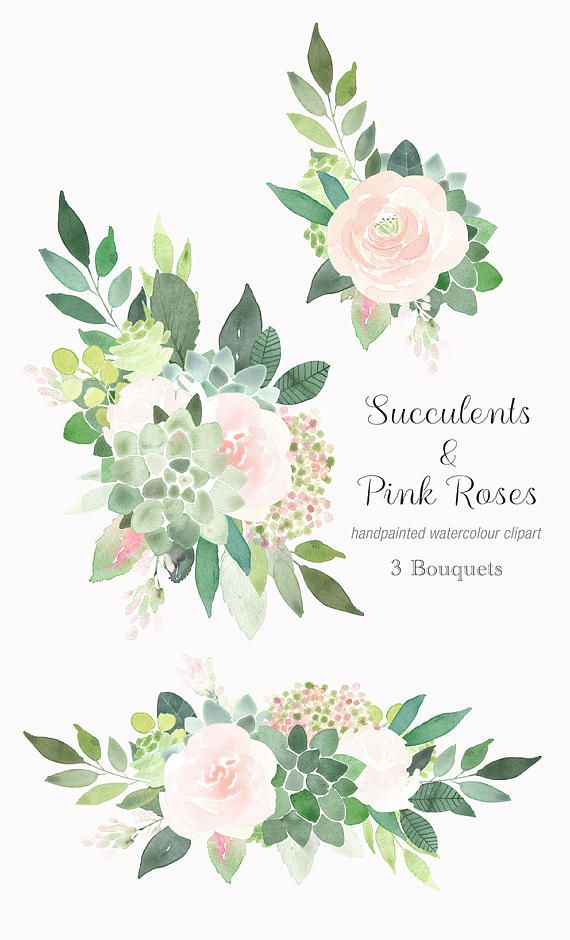 Watercolour Clipart Succulents And Pink Roses Wedding Clip Art