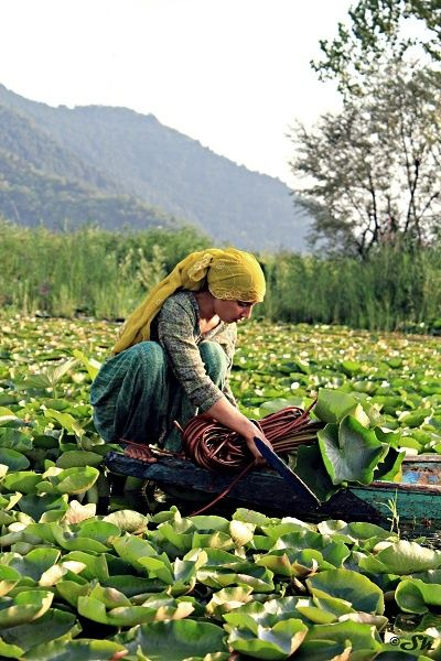 """world-ethnic-beauty: """" Kashmir is called heaven on the earth. """""""