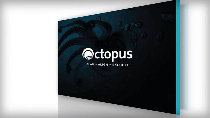 [Octopus Software -- Case Study] TriNetra Systems wanted to launch a new software as a service called Octopus, helping insurance companies improve their business planning process. We developed the brand identity along with the positioning statement, an interactive sales presentation, product white paper, website and an email campaign. The various executions allowed TriNetra to begin pitching and engaging potential customers quickly while beating the competition.
