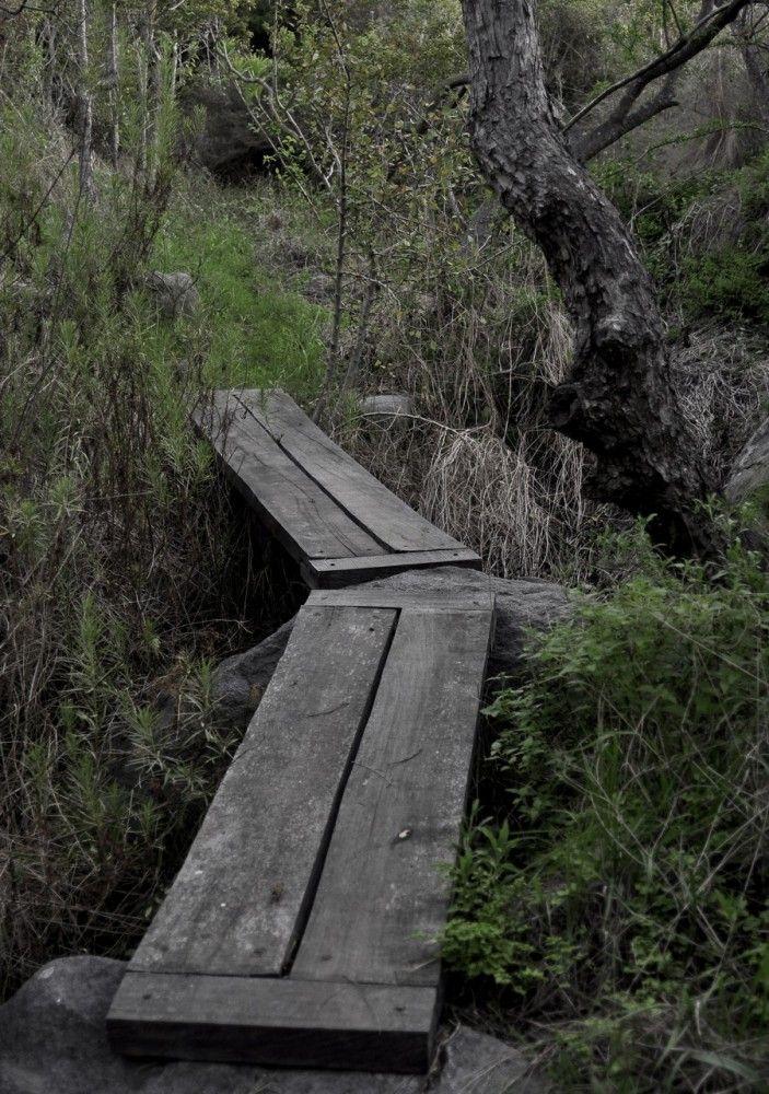 Punta Pite / Estudio del Paisaje Teresa Moller & Asociados (13)