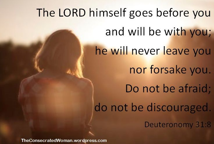 Verse of the Day: Deuteronomy 31:8 The LORD himself goes before you and will be with you; he will never leave you nor forsake you. Do not be afraid; do not be discouraged.  There are days wh…