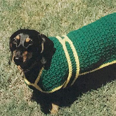 Oor die hond se rug