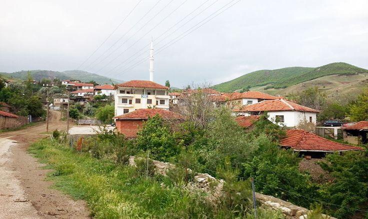 Yarımsöğüt Köyü