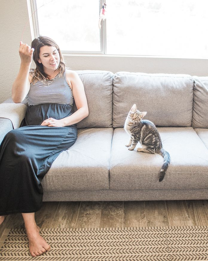 Cat Ruining Couch? Here's What To Do