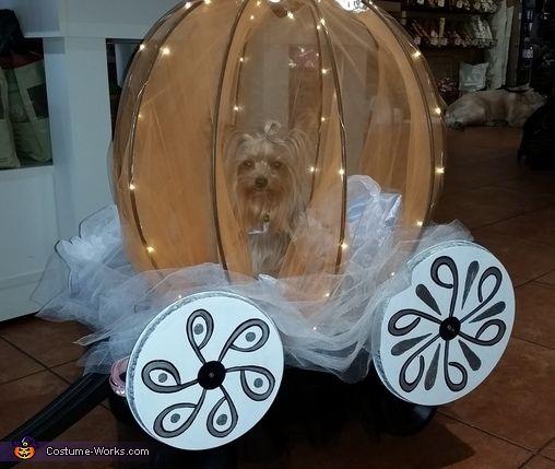 52 best images about float ideas on pinterest cinderella for Princess float ideas