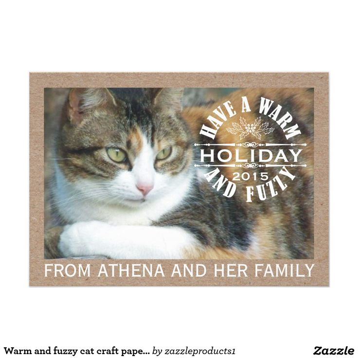 grumpy cat wedding invitations%0A Warm and fuzzy cat craft paper Christmas photo  x  Paper Invitation Card