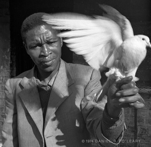 Man with Dove, Hanover Park, Cape Town, South Africa 1974