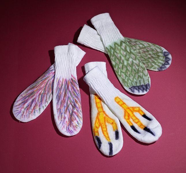 Dierenpoten met sokken