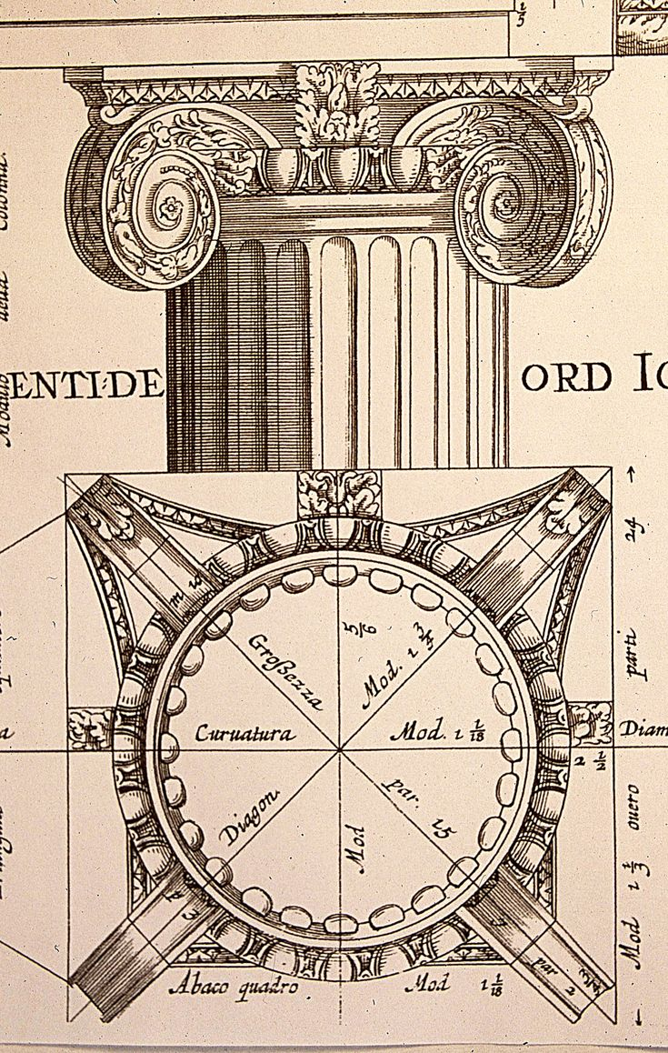 19th century architectural print - example of Greek Classical #Ionic order.