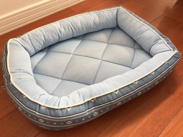 売り切れ続出 ニトリの Nクール シリーズのペットベッドを体験 いぬのきもちweb Magazine ペットベッド ベッド ペット