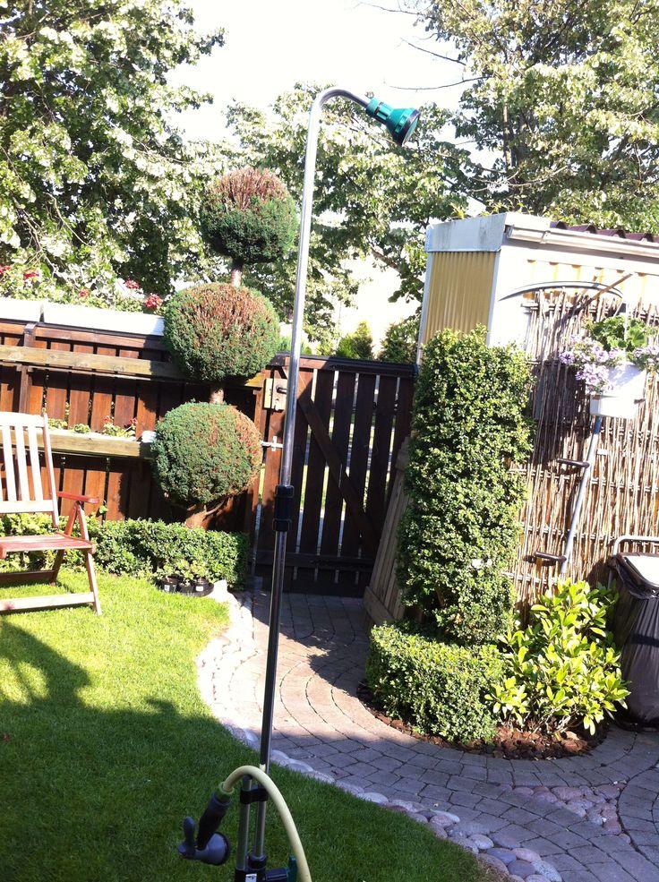 Både nyttig och vackert året rund liten trädgård.