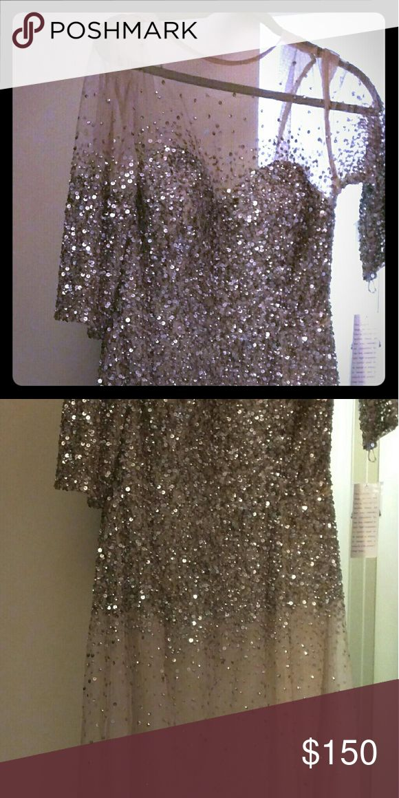 Beautiful nude evening dress Adriana Pappell nude/Champagne dress with silver sequins. Adrianna Papell Dresses Maxi