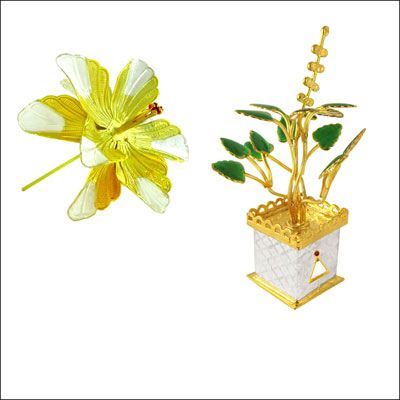 Gift Good Luck Plants with Sweets to Dear Ones.  Click here to Order: http://is.gd/WorldEnvironmentalHealthDay