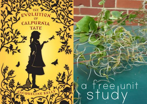 setting of the evolution of calpurnia The evolution of calpurnia tate fits an old notion of literature for young  as  kelly began writing return to the willows, she found one of the characters taking .