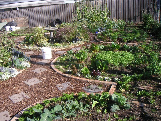 Permaculture Garden Design And More That You Need To Know 2015   2016   Vegetable  Gardening