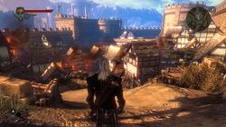 The Witcher 2 Guide in PlayOnLinux