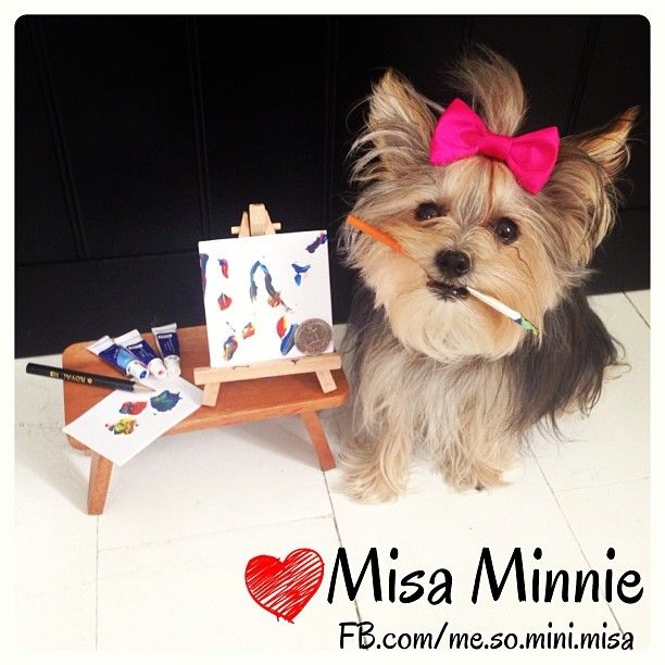 ❤Misa Minnie