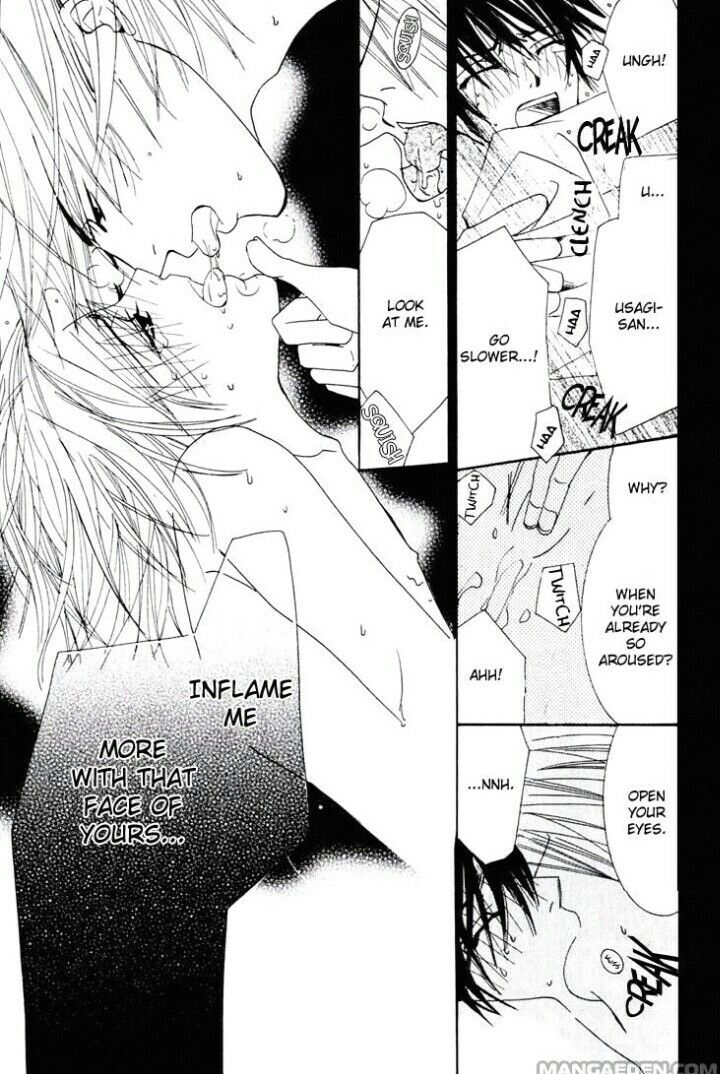 """""""Inflame me more with that face of yours""""   Junjou Romantica - Manga"""